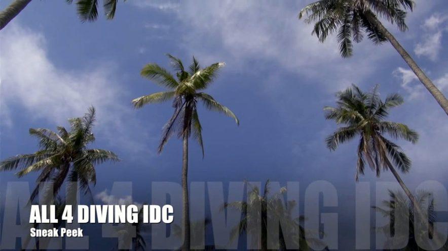 Phuket IDC Video